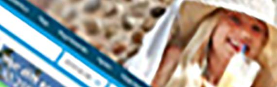 Sembo: Genomför WSI flera gånger om året