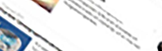 If Skadeförsäkring: Med många redaktörer krävs användarvänlighet
