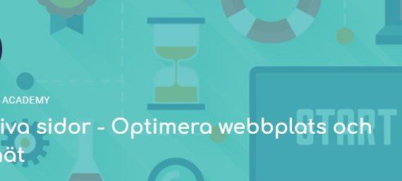 Utbildning 23 juni - Effektiva sidor - Optimera webbplats och intranät