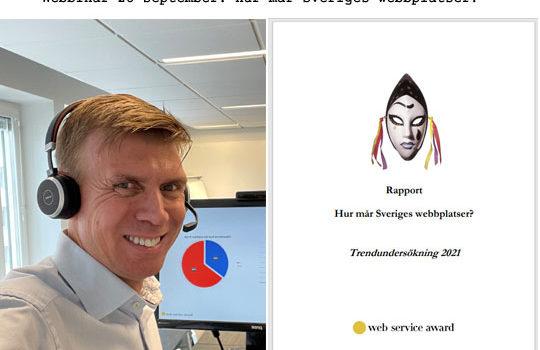 Webbinar 28 september 2021: Hur mår Sveriges webbplatser?